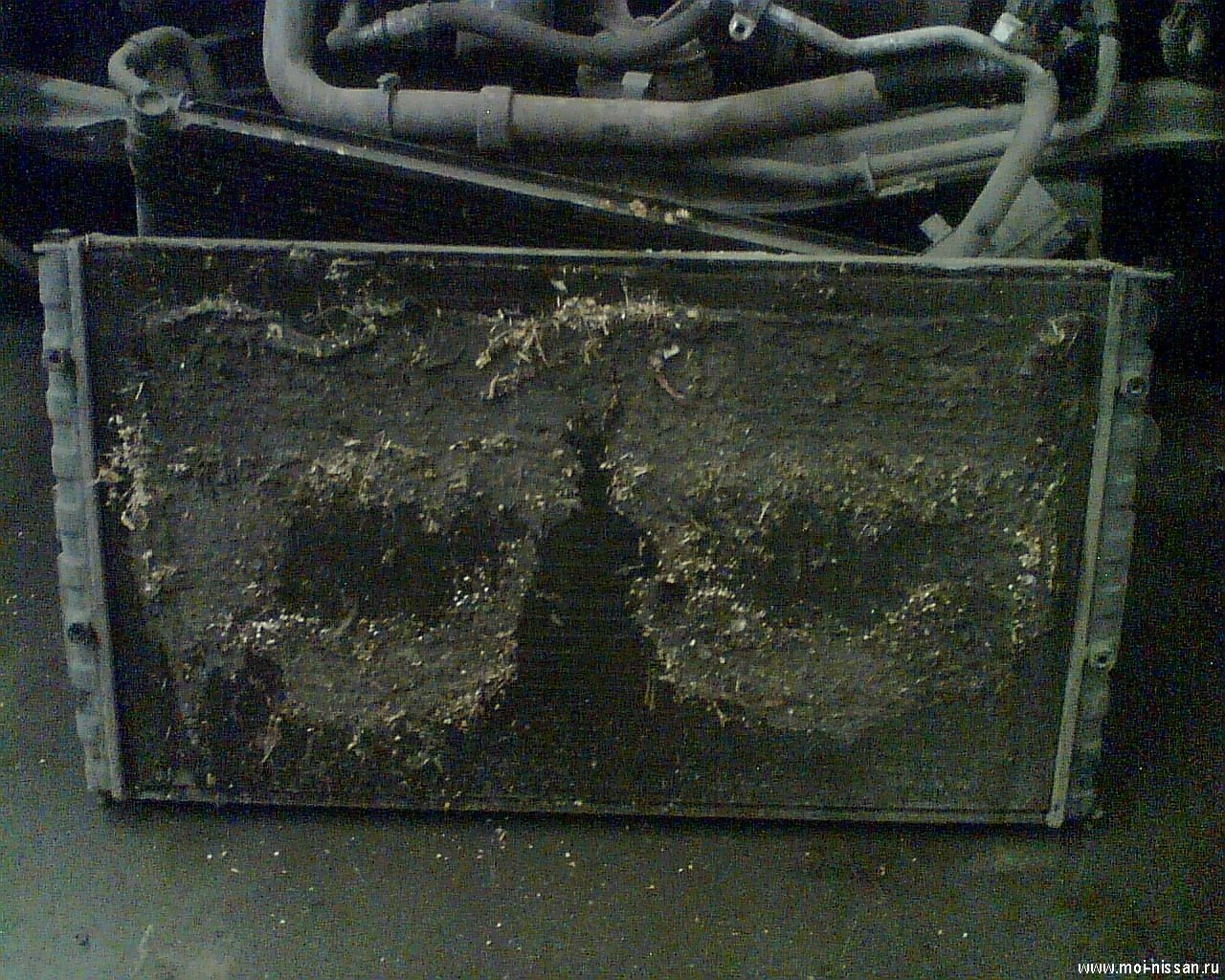 skoda завоздушеность радиатора